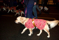 ??? Can Anyone Help With The Entry Name? - Honiton and District Canine Society