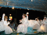 Ottery's Royal Swans On Moonlight Falls - Ottery St Mary CC